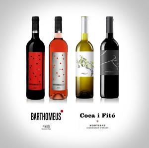 presentació vins_w
